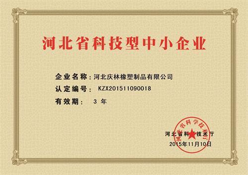 科技新企业证书